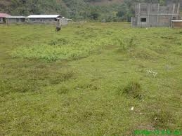 2000M2 Of Land For Sale In Opebi