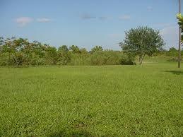 100 Plots Of Land For Ssle At Magboro.